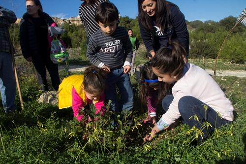 Planting a tree_Chris Cachia Zammit