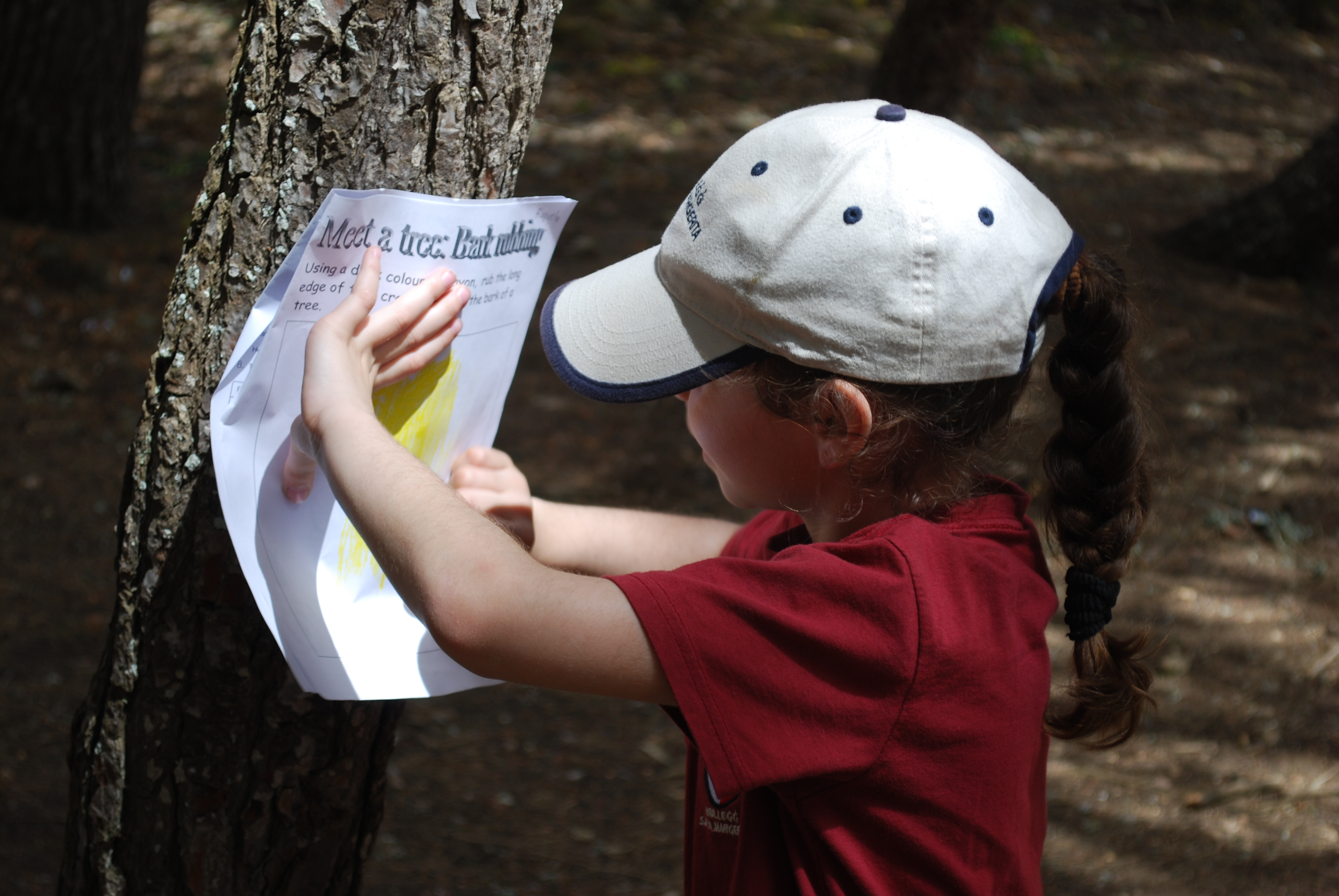 building teacher confidence in outdoor learning a short study we would like to stress the point that outdoor learning shouldn t be considered as something that takes time away from learning