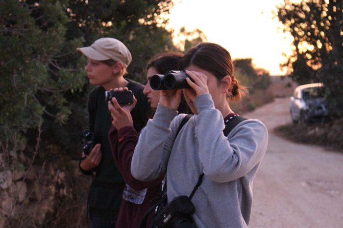 Raptor Camp Wildlife Crime BirdLife Malta