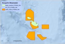 Scopoli's Shearwater IBA map