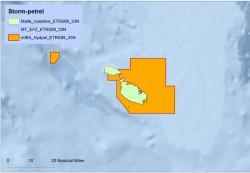 Storm petrel IBA map