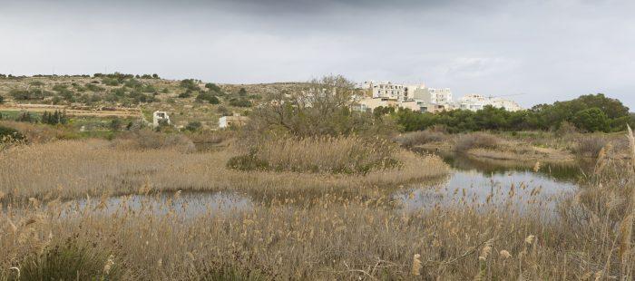 panoramic-view-of-simar_steven-williams