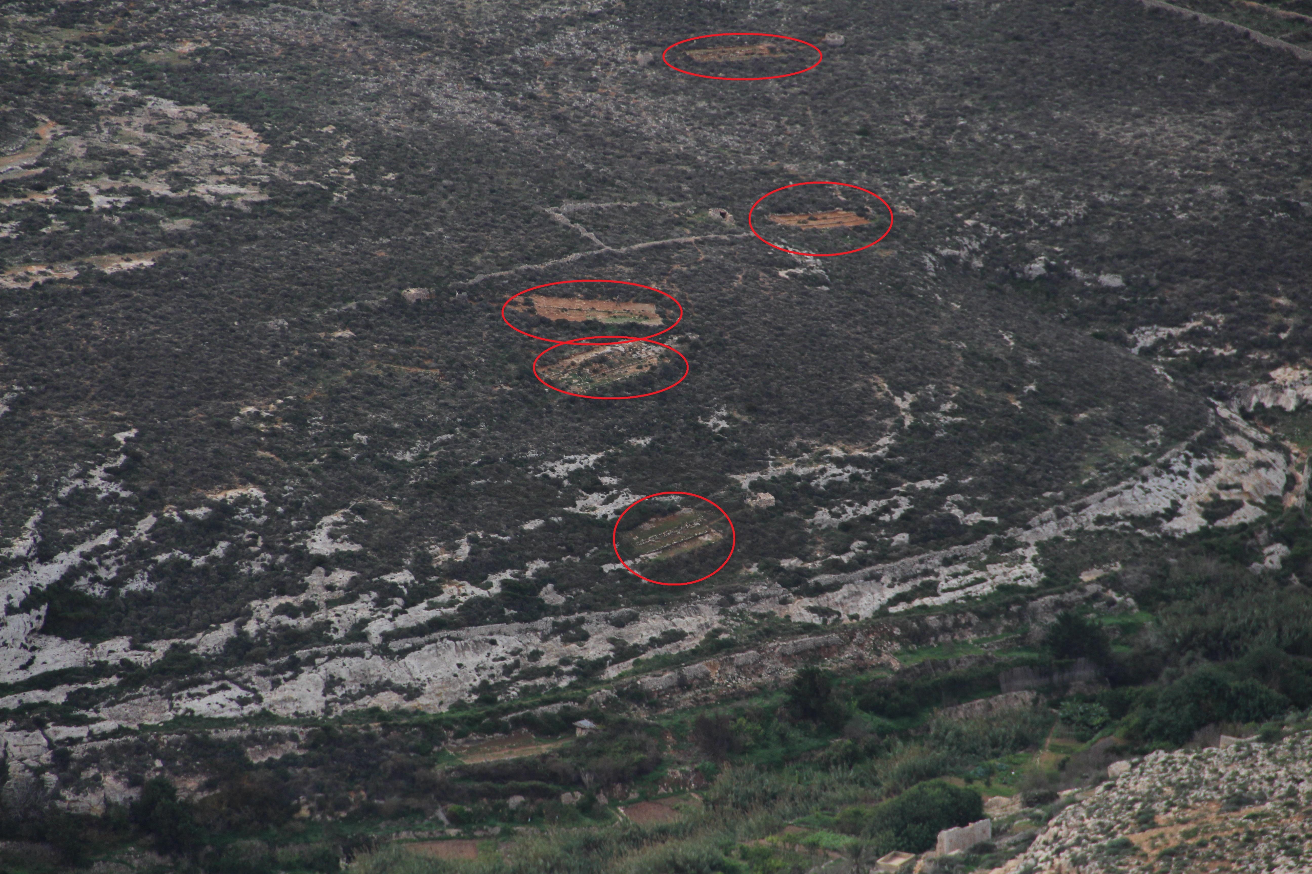 1-qortin-tal-magun-natura-2000