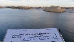 white wagtail birdlife malta valletta
