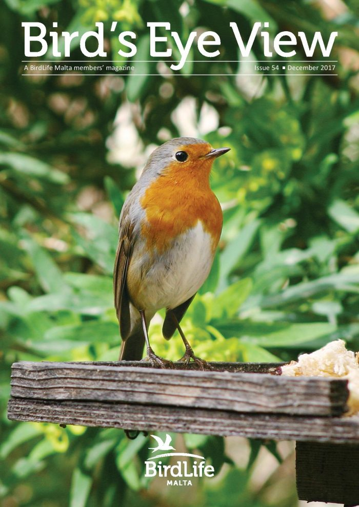 BirdLife Malta member magazine 2017