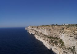 Gozo Cliffs Nature Walk BirdLife Malta